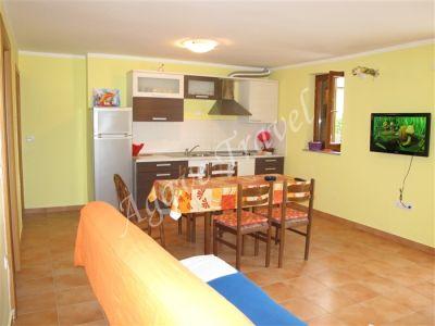 Apartment type B 118