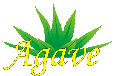 Agave travel